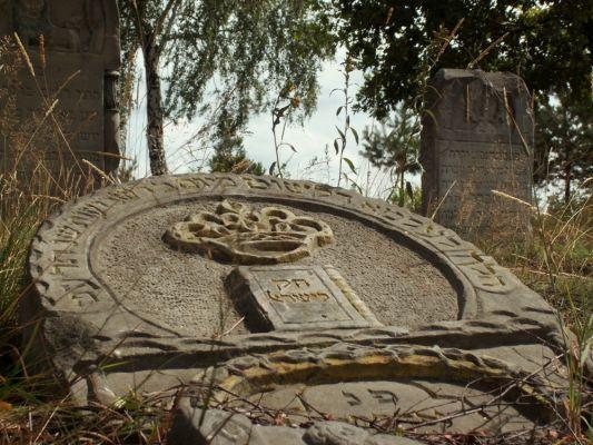 Macewa na dawnym cmentarzu żydowskim w Zaklikowie.