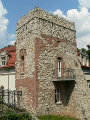 Mysia Wieża obok pałacu w Kamieńcu.