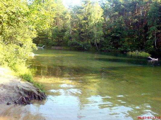 Rezerwat przyrody Dolina Żabnika