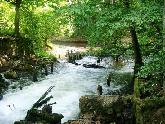 Ruiny starej węgorni nad rzeką Płociczną, Drawieński Park Narodowy