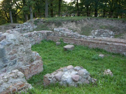 Ruiny zamku krzyżackiego w Dzierzgoniu