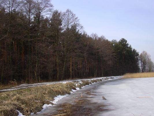 Wyry - Jezioro Wici