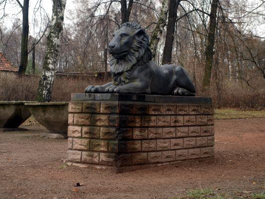 Jeden z lwów Schadowa przed parkiem im. Pileckiego w Zabrzu, pochodzący ze Świerklańca