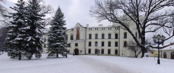 Stary Zamek w Żywcu w lutym 2010
