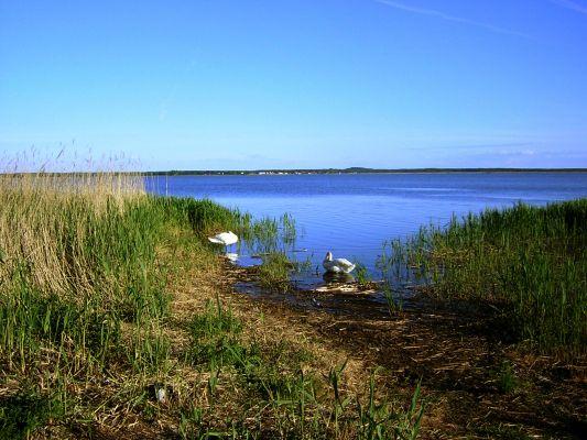 Jezioro Łebsko w Słowińskim Parku Narodowym.
