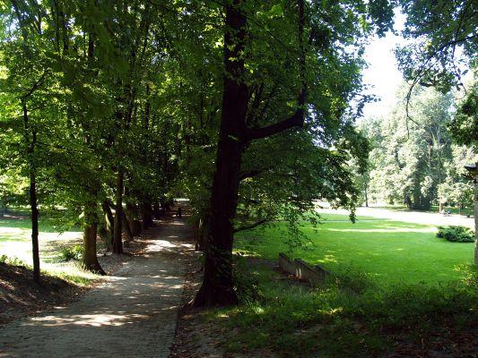 Park z aleją grabową w Przeworsku
