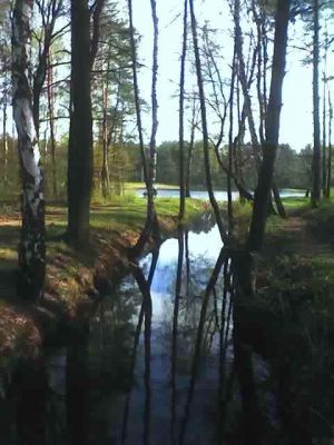 Rzeka Pniowiec