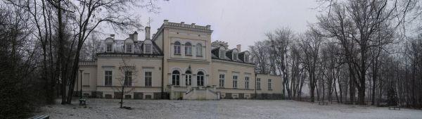 Pałac w Skokach