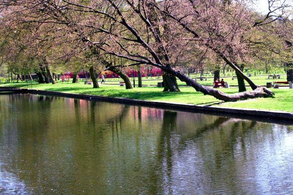 Park Majkowskiego w Wejherowie