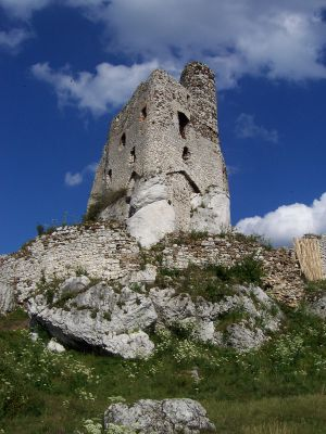 Zamek w Mirowie z oddalenia