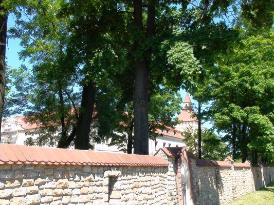 Zamek w Starych Tarnowicach - widok od strony bramy