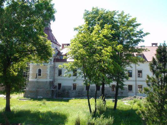 Zamek w Starych Tarnowicach - widok od wschodu
