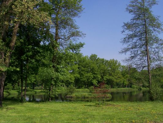 Park w Rudach