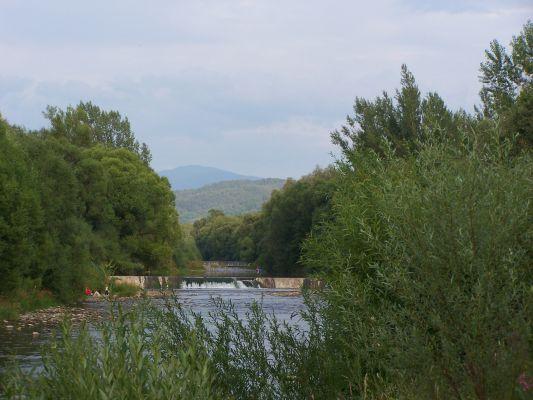 Rzeka Soła w Żywcu