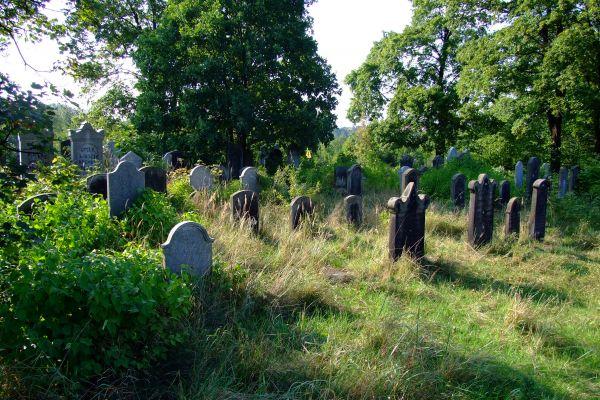 Cmentaż żydowski w Pyskowicach
