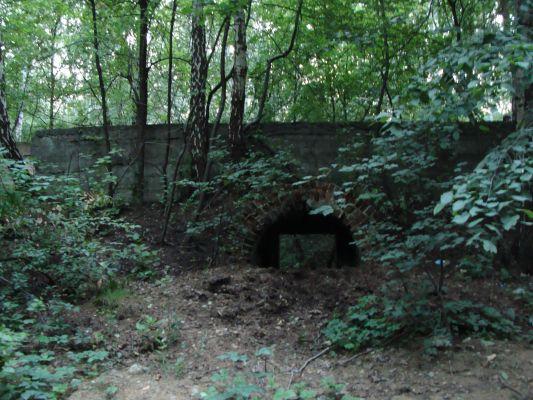 Ruiny prochownii w Sosnowcu - Dańdówce