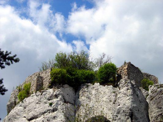 Ruiny Strażnicy w Ryczowie