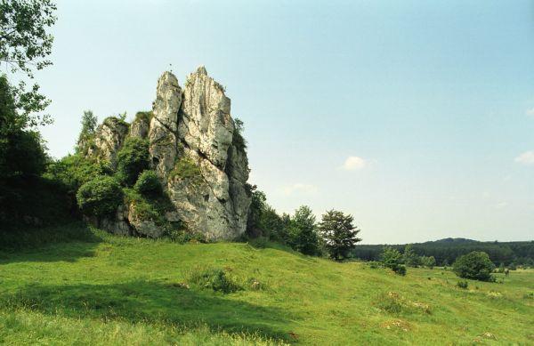 Łutowiec - skała z pozostałościami strażnicy