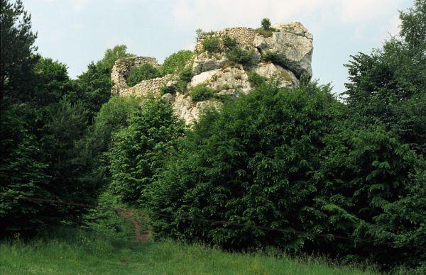 Morsko, pozostałości zamku Bąkowiec