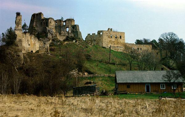 Odrzykoń, zamek Kamieniec, ruiny zamku