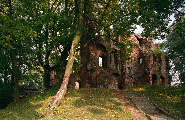 Ruiny Zamku w Dobrej