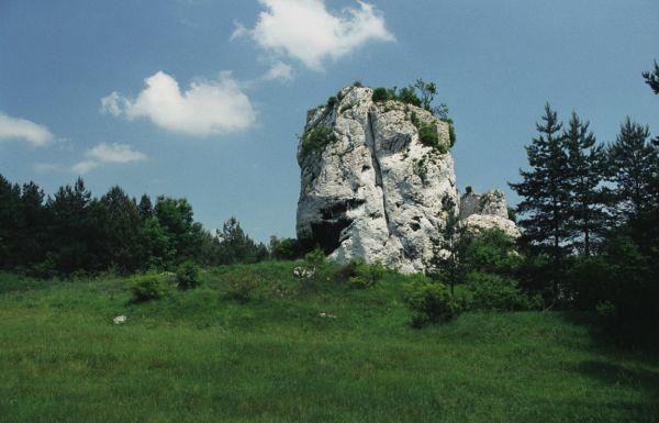 Ryczów - skała z pozostałościami strażnicy