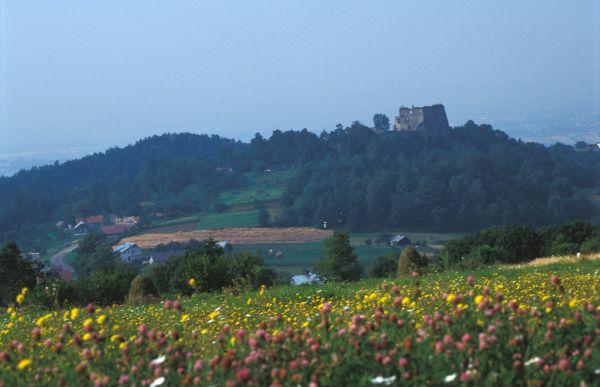 Zamek Kamieniec - widok od północy(ze wsi Czarnorzeki)