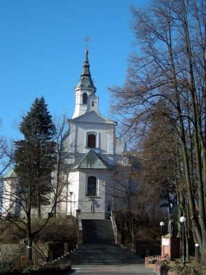 Kościół pw. świętego Wita w Tuliszkowie