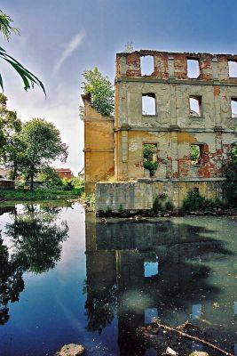 Zamek w Czerninie - pozostałości zamkowej fosy