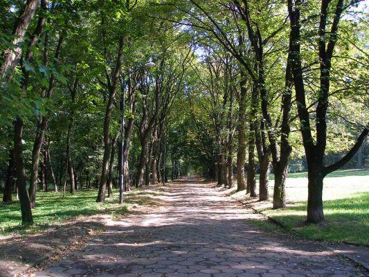 Park w Bytomiu