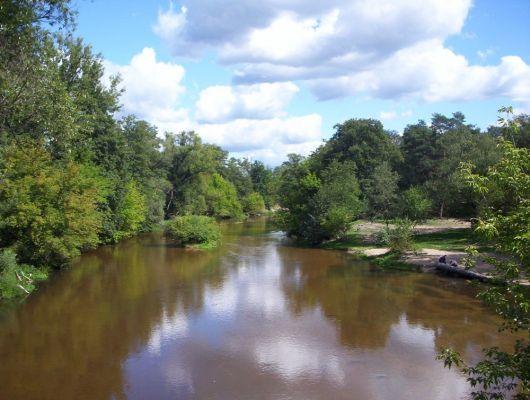 Rzeka Świder w rezerwacie przyrody Świder, na granicy Józefowa i Otwocka