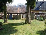 Cmentarz przy kościele Bożego Ciała