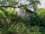 Ruiny dworu w Leniach Wielkich