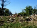 Dłutów, ruiny dworu