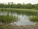 Staroleskie Lake (Starogard Gd (4)