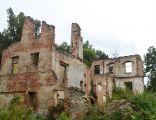 Włostów, ruiny pałacu (08)