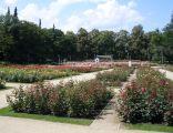 Ogród Różany w Szczecinie wlz 3