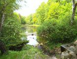 Park Miejski w Toruniu1
