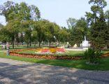 Park Konstytucji 3 Maja w Suwałkach - kwiaty