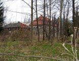 Park pałacowy w Ciszycy