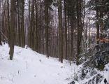 Rezerwat Szeroka A 236