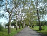 Bialska Nyska (Częstochowa)