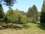Zielonka Arboretum