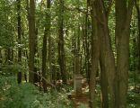 Poland Kielce - Checinsko-Kielecki Landscape Park
