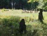 Cmentarz ewangelicki Bobolice
