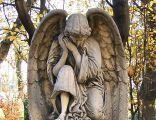 Katowice - Cmentarz ewangelicki - Anioł