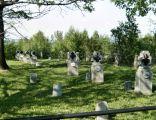 Cmentarz wojenny nr 217 - Januszkowice