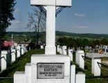 Cmentarz wojenny nr 224 - Brzostek