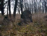 I WW, Military cemetery 275 Brzesko, Poland
