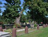 WWI, Military cemetery No. 323 Mikluszowice, Mikluszowice village, Bochnia county, Lesser Poland Voivodeship, Poland